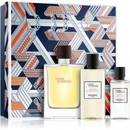 Hermès Terre d'Hermès ajándékszett VIII.  Eau de Toilette 100 ml + tusfürdő gél 80 ml + borotválkozás utáni arcvíz 40 ml
