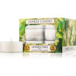 Yankee Candle Linden Tree teamécses 12 x 9,8 g