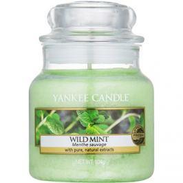 Yankee Candle Wild Mint illatos gyertya  104 g Classic kis méret