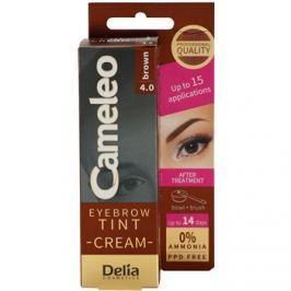 Delia Cosmetics Cameleo professzionális krémes festék a szemöldökre ammónia nélkül árnyalat 4.0 Brown 15 ml