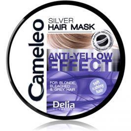 Delia Cosmetics Cameleo Silver haj maszk semlegesíti a sárgás tónusokat  250 ml