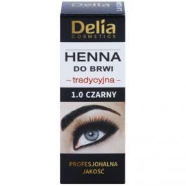 Delia Cosmetics Henna szemöldökfesték árnyalat 1.0 Black 2 g + 2 ml