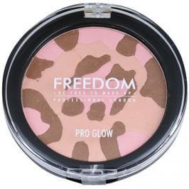 Freedom Pro Glow multifunkciós bőrvilágosító árnyalat Purr 4 g