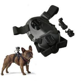 Kutyahám, amelyre kamera szerelhető
