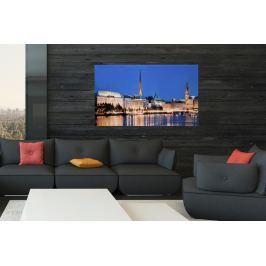 Kép HAMBURG ASTER 50x70 cm - üveg