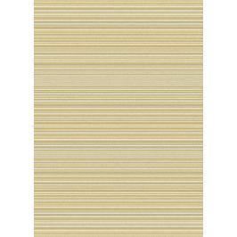 Szőnyeg FOCUS FC05 Ochre Stripes