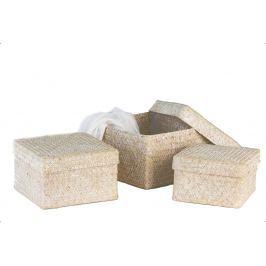 Dekoratívne krabičky NATUR, 3 ks - prírodná, biela