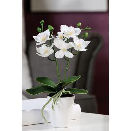 Virág ORCHID - fehér
